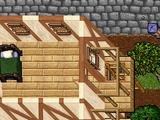 The City Wall 5b