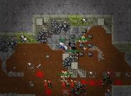 Undead Cavebears on Nova