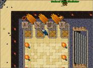 The Secret Library Quest - Darashia Ritual
