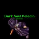 Dark Soul Paladin