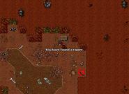 Rookgard Rapier Chest