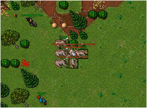 Donkey mount00003
