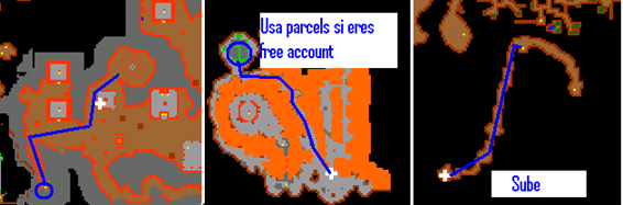 Lbrevent0048