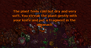 An Interest In Botany Quest-Dreadcoil2
