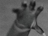 Cat-Man-Dude