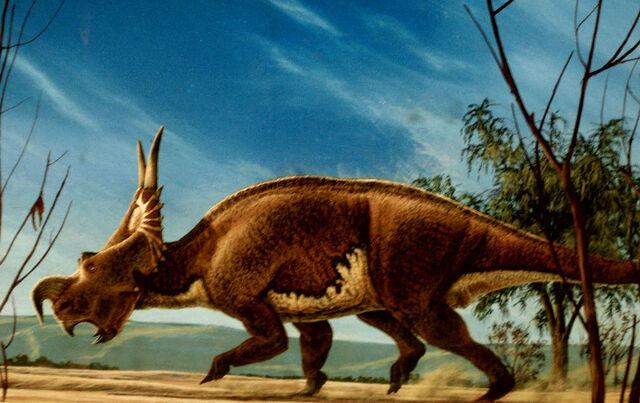 File:Einiosaurus-timbox129.jpg