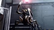Mantis Terror Bites