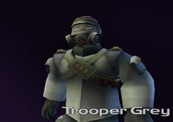 Trooper Grey