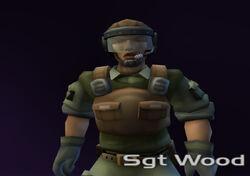 Sgt Wood