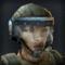 TS2 Sergeant Rock