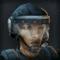 TS2 Sergeant Shock