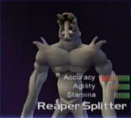 ReaperSplitter