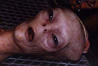 Alien-autopsy-460x310