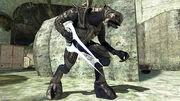 Halo 3- Arbiter and Blade