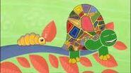 Images tortoise caterpillar