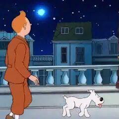 Tintin observes at the meteorite, thinking that he never noticed that star before.