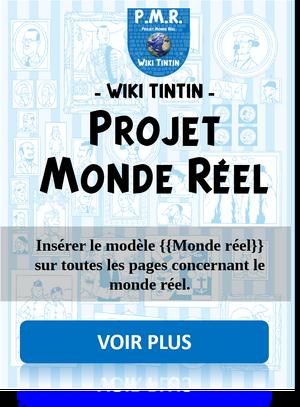 Affiche projet monde réel