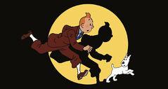 Les Aventures de Tintin (série, 1991)