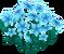 Deco 1x1cyanflowers thumb@2x