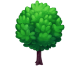 Deco 1x1greentree2 thumb@2x