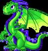 GreenDragon-Adult