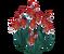 Deco 1x1redflowers thumb@2x