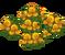 Deco 1x1yellowflowers thumb@2x