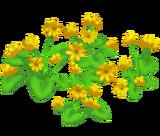 Deco 1x1goldenflowers thumb@2x