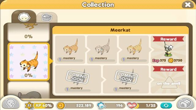 File:Zoo Meerkat.jpg