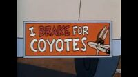 Wile E Coyote Tiny Toon Adventures movie