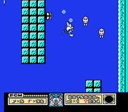 Furrball swimming