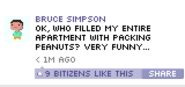 Bitbook Bruce Simpson