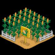 Decoration cornfield thumbnail@2x