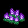 Decoration fireflower purple thumbnail@2x