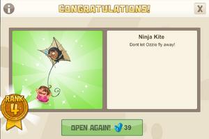 Ninja 4 ninja kite