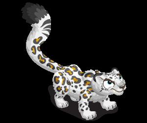 Snowleopard adult@2x