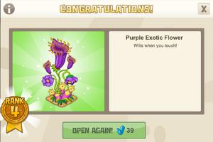 New year 4 purple exotic flower