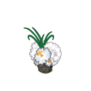 Decoration weddingflowers white1 thumbnail@2x