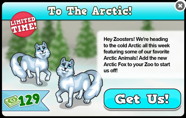 Artic fox new modal