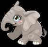 Elephant baby mile3 single