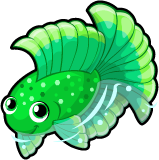 Emerald betta single