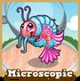 Store microscopic