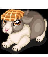 Waffle Head Bunny
