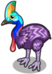 New guinea cassowary single