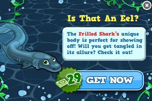 Frilled shark modal