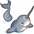 Narwhal single