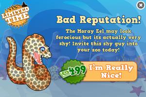 Moray eel modal