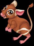 Kangaroo rat static