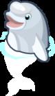 Beluga Whale single