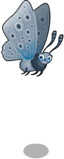 Large blue butterfly an